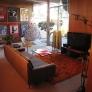eichler-mid-century-modern-living-room-decor