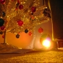 christmas-card-photos-2011-069-2d5241054072f7a3b21feeeac6a79b153e139f07