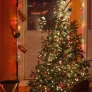 christmas_tree_done7-7fca3bd0697c675e005db69d23c56ea334e5dbf5
