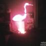 flamingo-light-0b14a65957efe2364ffaca9a4cdf6f186a47706f