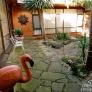 flamingo-small-6dedc6837c533b2c33e28267429191f74d3ffd6a
