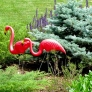 featherstone-flamingo-1