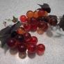 grapes-086dc835c36bf664144860183f60653407399d8b