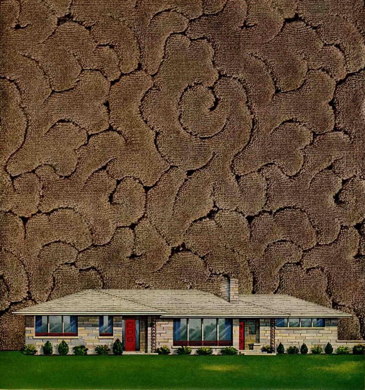 1954 wilton carpet