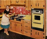 vintage caloric oven and stove top