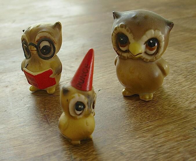 rachels-owls