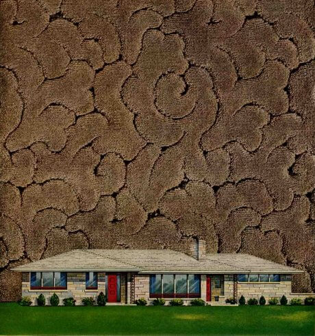 1954-wilton-carpeting