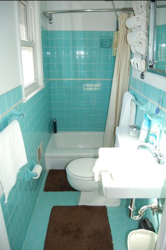 Paint Color For Bathroom With Blue Tub