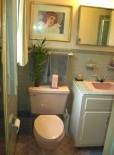 Colvin's masterpiece pink and gray bathroom