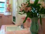 Liz's pretty in pink bathroom