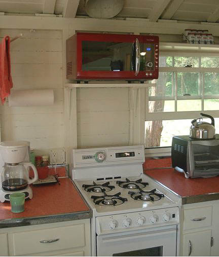 coral-colored-boomerang-formica-countertops