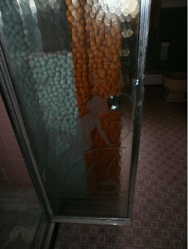 shower door with a naked woman etching