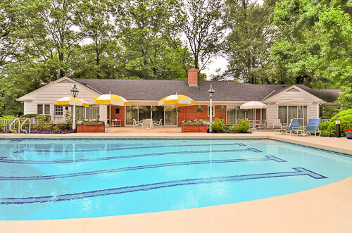 olympic sized swimming pool in backyard of 1962 house