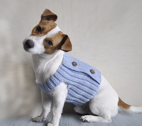 pattern to knit dog sweater
