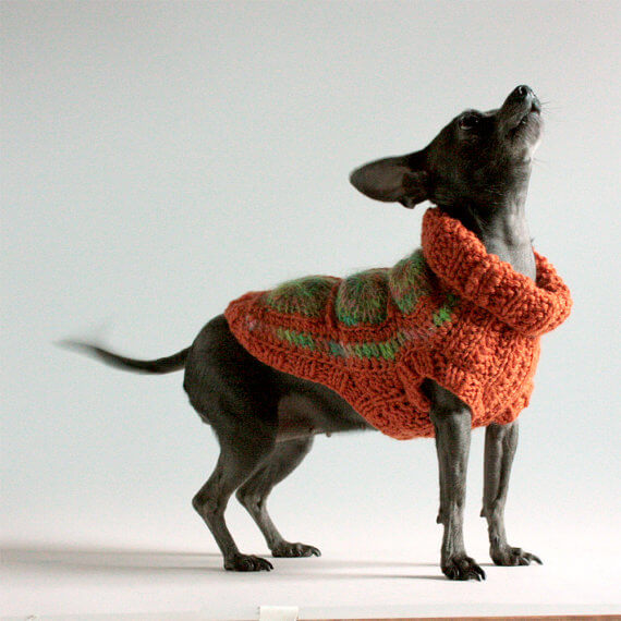 granny square afghan sweater for a dog