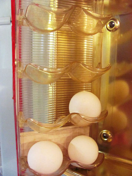 egg compartment of a vintage kelvinator foodarama