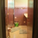 1962 Ranch Mauve bathroom