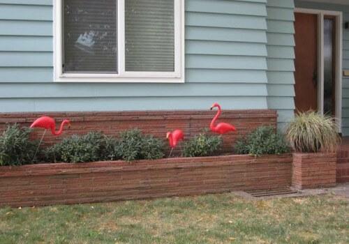 a readers pink flamingo lawn ornaments