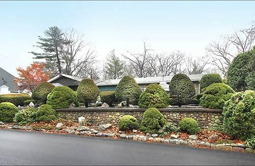hidden-mid-century-house-landscaping