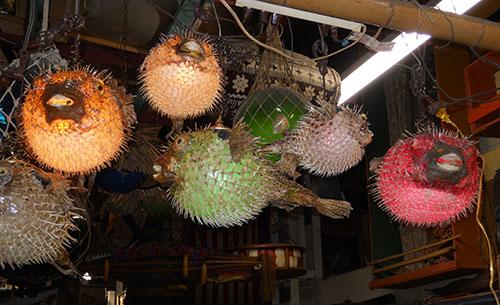 Tiki decor motherlode oceanic arts established in 1956 for Puffer fish lamp