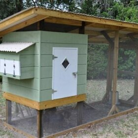 mid century style chicken coop
