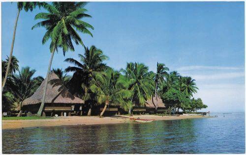 Tropical tiki hut