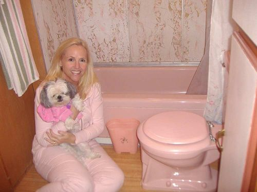 vintage-pink-trailer-bathroom