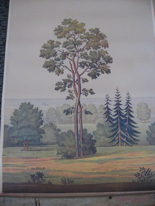 full room vintage wallpaper murals by the schmitz horning