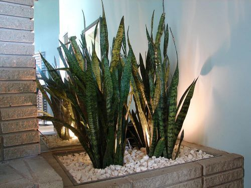 built in planter vintage