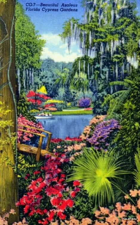 Tropical Decorating Inspiration From 12 Vintage Florida