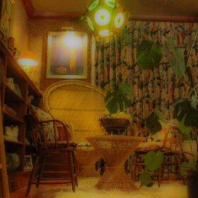 peacock chair in a home tiki bar
