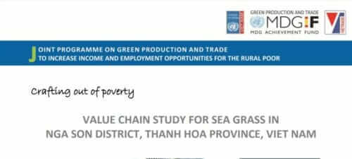 seagrass cultivation and production in viet nam