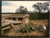 1940 New Mexico dugout house FSA photograph