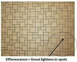 efflorescence in tile